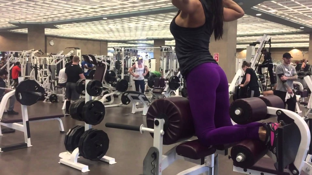 Image result for glute ham developer crossfit